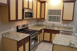 lone-star-luxury-homes-kitchen-appliances