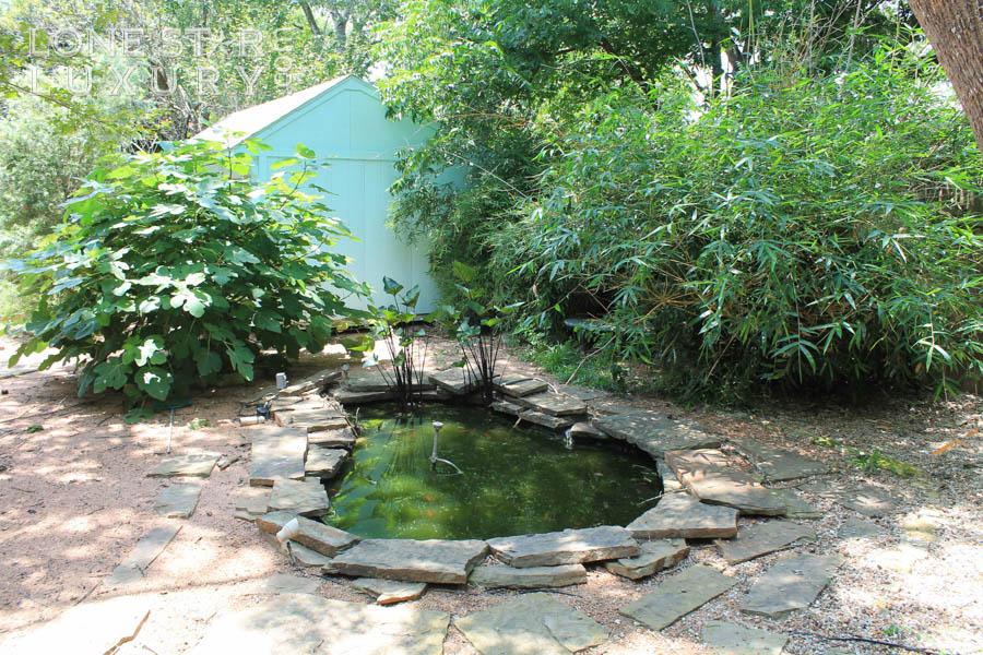 spacious-backyard-in-south-austin