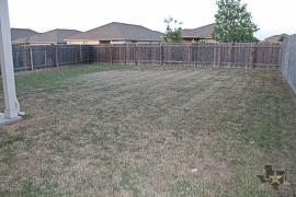 hutto-backyard