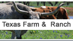 Texas Farm and Ranch properties for sale