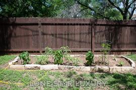 1607-sylvia-lane-round-rock-texas-78681-24