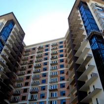 Dallas Metropolis Area Leasing